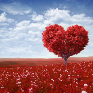 Amore-e-familiarità-300©-Maksim-Samasiuk-Fotolia.com_