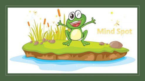 mind_spot_2